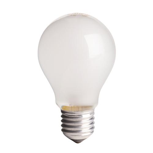 ES 110V Bulb