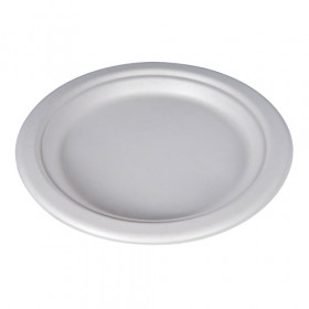 Compostable Bagasse Plate - 23cm, Pack Size: 100