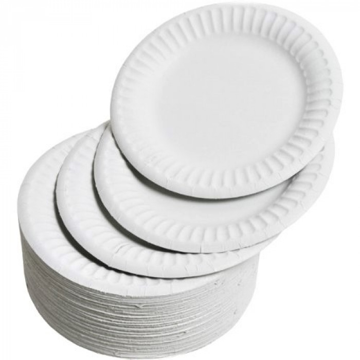 Essentials White Paper Plates 9inch Pack 100